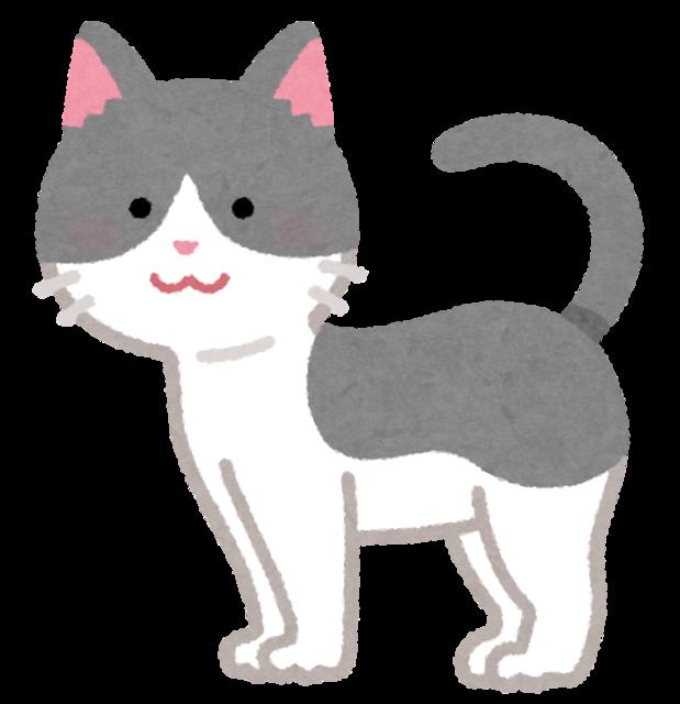 cat05_moyou_gray_moyou_white.png