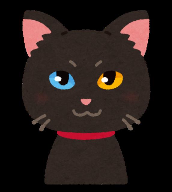 pet_cat_oddeye_black.png